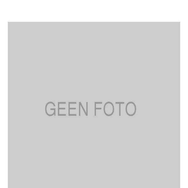 Geperforeerde remschijven achterzijde Sport kwaliteit MERCEDES-BENZ SLK (R171) 55 AMG